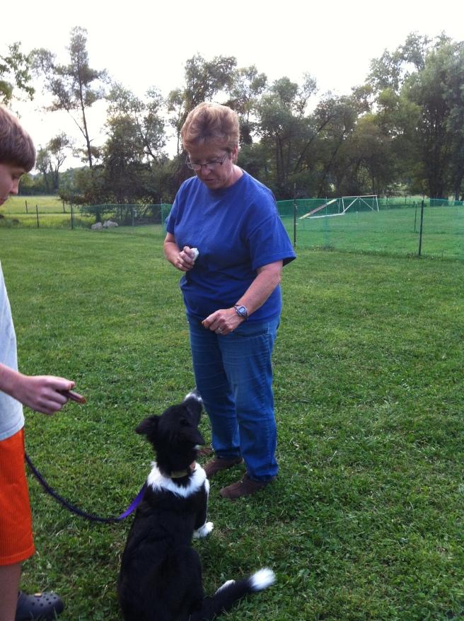 Doreen teaching Puppy Class