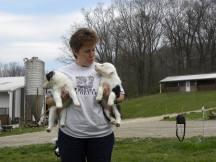 Doreen with CiCi x Mat pups